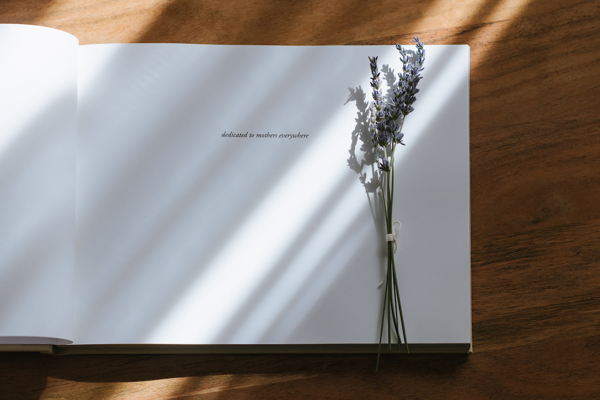 Rays of light flooding in from the window onto the dedication page of I Wish, I Wish by Martha Swann-Quinn as a sprig of lavender rests on the page