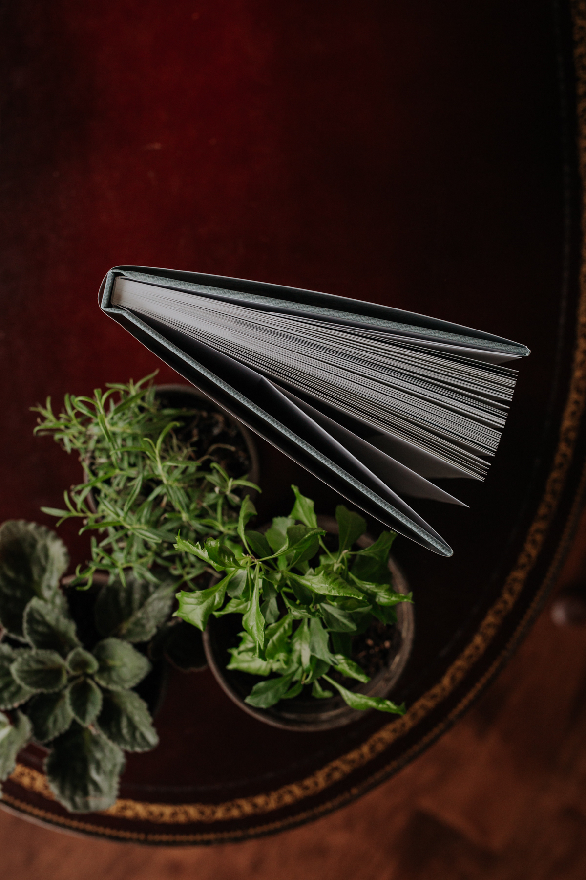 Overhead photo of Artifact Uprising Hardcover Photo Book standing closed on coffee table next to potted plants