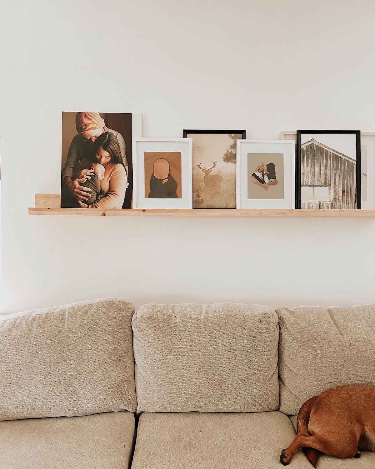 Artifact Uprising Gallery Frames layered on floating wall shelf above couch with dog